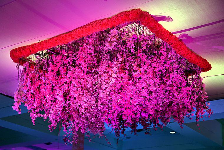 Pink tendrils floral Chandelier