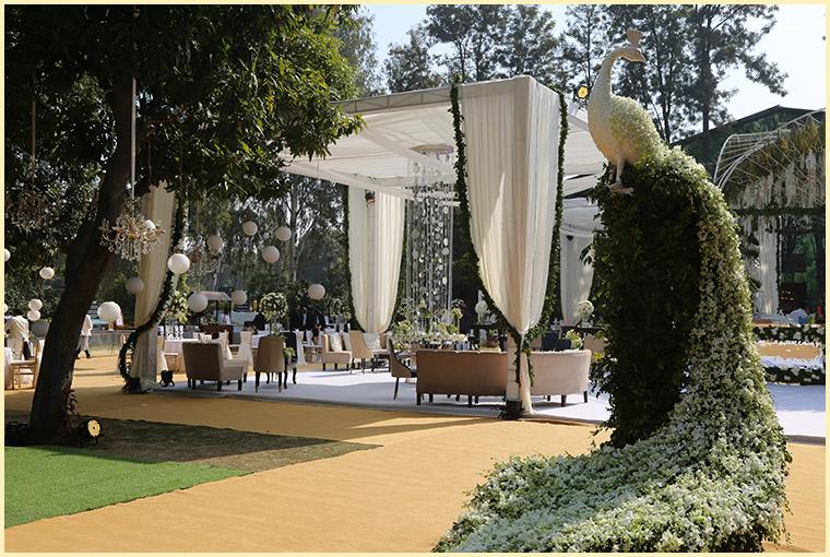 Summer Wedding venues lawn & decor