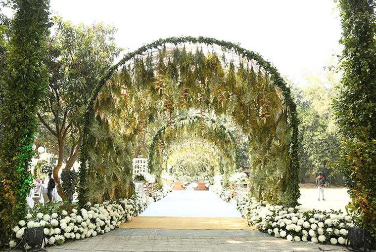 A dreamy setting with green foliage!